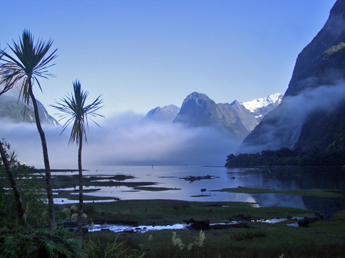 Real_new_zealand_103