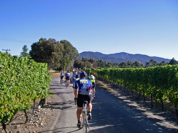 Grape_ride_200712
