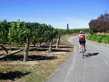 Grape_ride_200730
