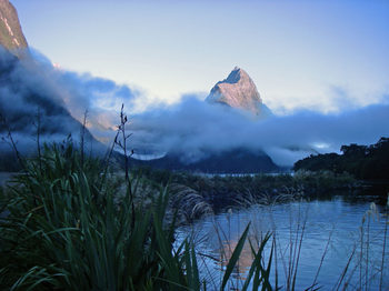 Milford_sound_overnight28