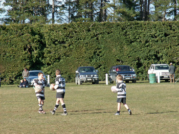 Rugby_day_in_canterbury11