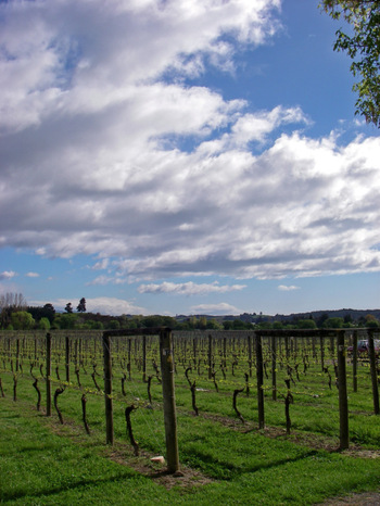 Spring_clouds2