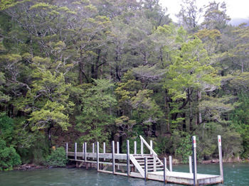 Nelson_lakes03