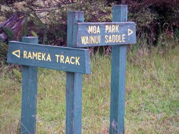 Rameka_track06